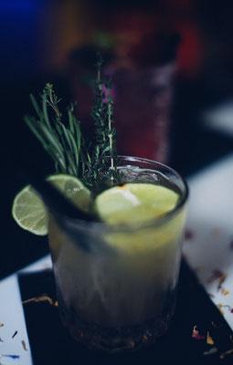 Gin mit frischen Kräutern