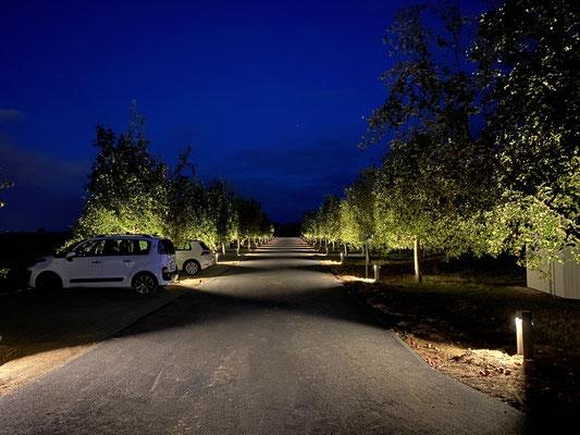 Hofanlage Vorgebirgsblick - Beleuchtung Außenanlage / Parkplatz