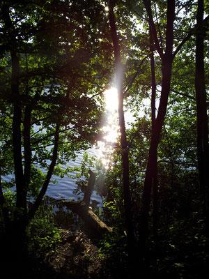 Über Licht - plan.b lichtplanung, Lichtdesigner Gerolstein / Eifel