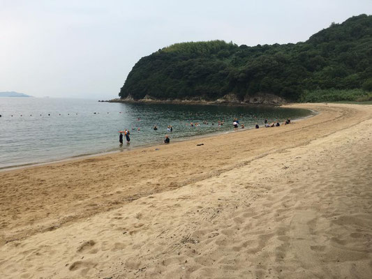 午後からは二つのグループに分かれて底引き網漁体験と海水浴をしました。海水浴は下浦海水浴場で行ないました。神戸の海もきれいですが、瀬戸内海でトップクラスの美しさを誇る下浦の海に、皆さん歓声をあげていました。