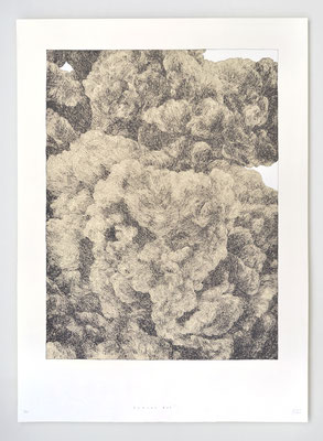 FRACAS 05 / 50x70cm / Sérigraphie 15ex.