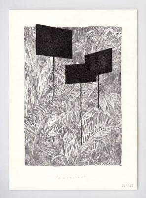 ARCHIVES _ 21x29,7cm _ graphite et encre _ papier Ursus 300gr