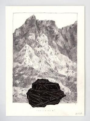 COLLECTE II _ 21x29,7cm _ graphite et encre _ papier Ursus 300gr