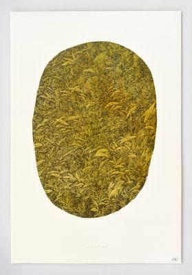 """VENDU - SOLD /// """"BERCAIL 03"""" / Encre & aquarelle / 60x40cm"""