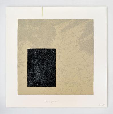 """""""SPECIMEN III"""" _ sérigraphie, dessin & feuille d'or _ 40x40cm _ 10ex."""