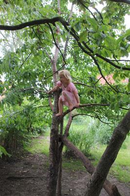 toben in den Bäumen