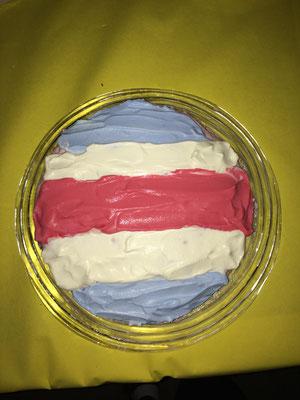 Meine Schwester hat einen Kuchen gemacht mit der Fahne von Costa Rica drauf.