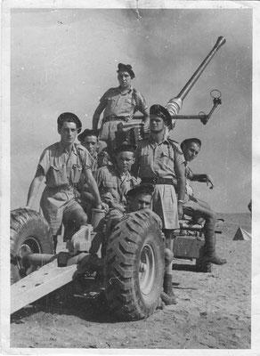 Avant El ALamein-sept 1942 - Fonds Fercocq