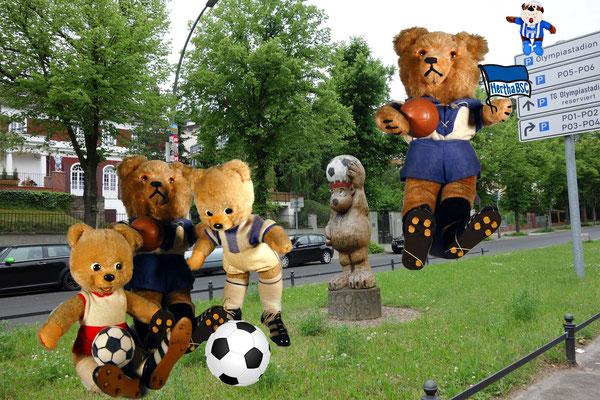© Dr. Ursula Fellberg; Schucco Bigo Bello Teddybären aus der Sammlung Fellberg