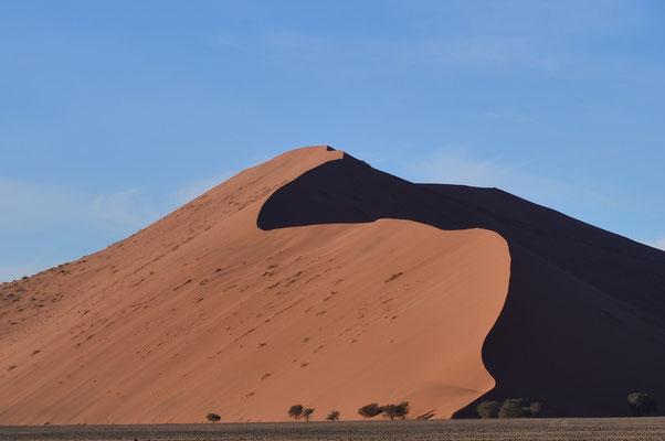Dune rouge (Désert du Namib, Namibie)
