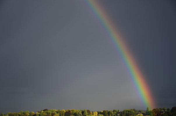 Arc-en-ciel, symbole de l'alliance avec Noé