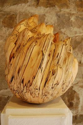 Egg (Urkeimling), 2014/17, 30x40cm, Stockbirke geölt und gewachst