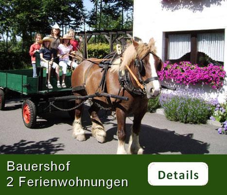 Bauershof