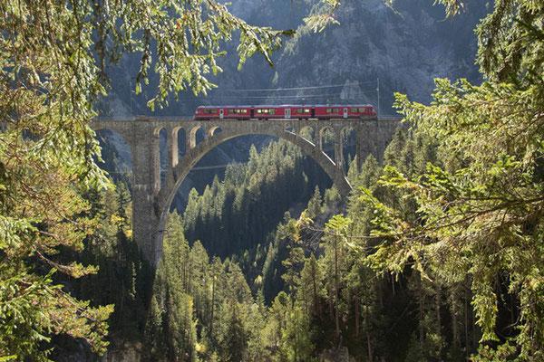 8010 wiesner viadukt