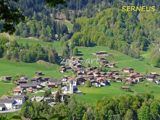 1005 serneus