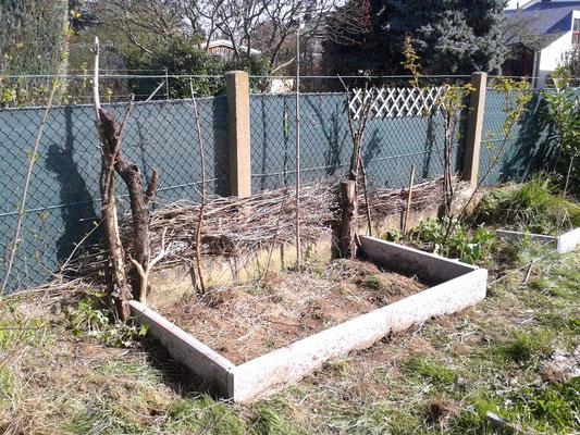 Das erste von 2 Gemüsebeeten. Die Benjeshecke ist angefangen und soll schließlich den ganzen Zaun verdecken.
