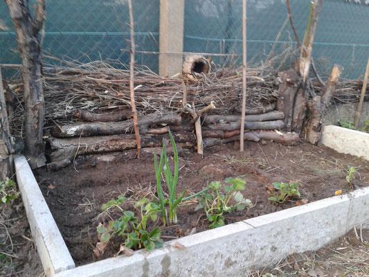 Totholz liegend und stehen als Hintergrund und Unterschlupf