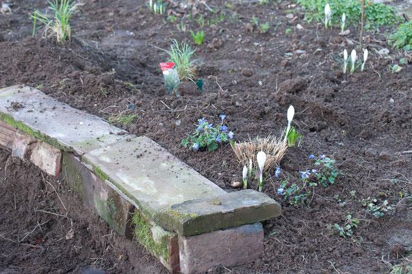 Die Mauer ist noch provisorisch, die ersten Pflanzen stehen im wachsenden Erdhügel.