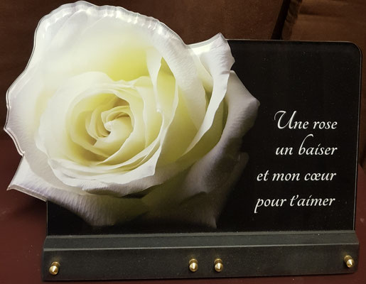 plaque rose blanche