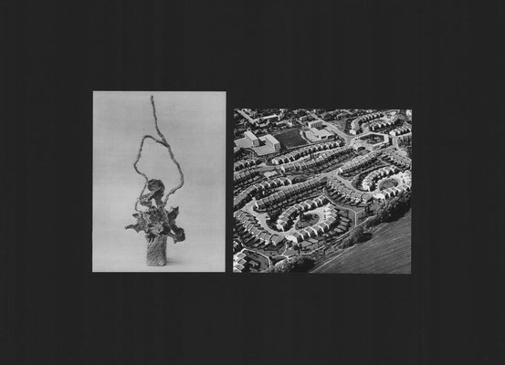 Ikebana 3 (2016) Collage, 50x70cm