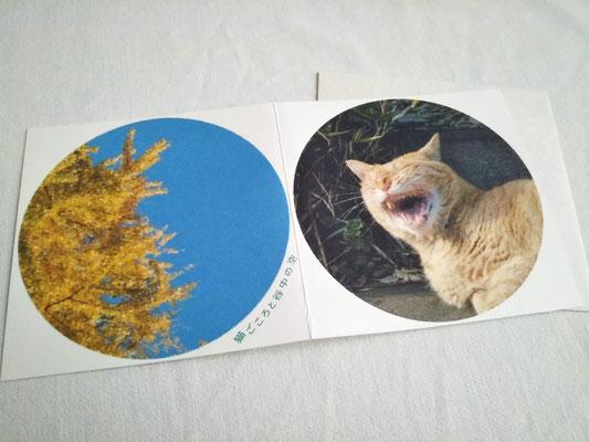 猫ごころと谷中の空④ 385円