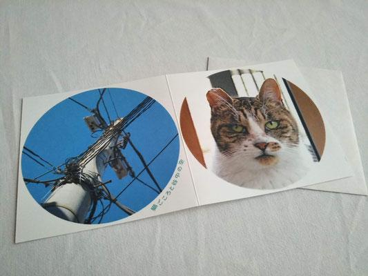 猫ごころと谷中の空① 385円