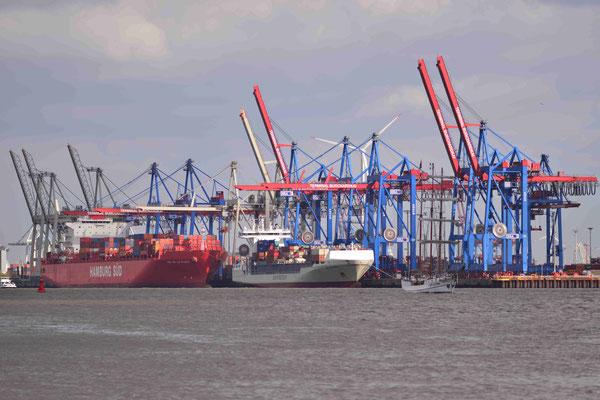 63 - Kranreihe im Hamburger Hafen.