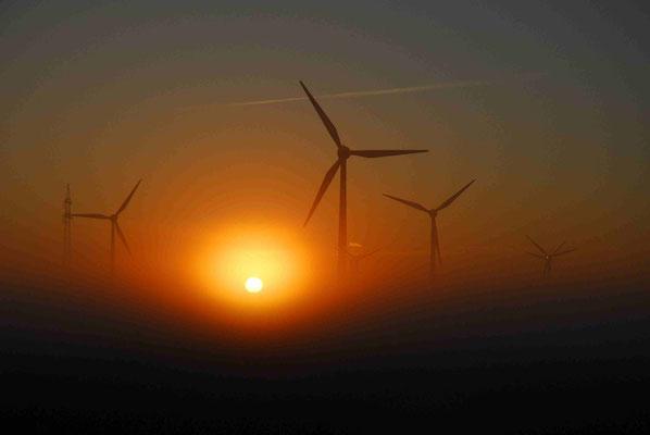33 - Windrad, Windkraftanlage, Windkraft, Windgenerator, Ökostrom,  Windpark Oederquart, Dämmerung,  Sonnenaufgang, Sonnenuntergang, Nebel