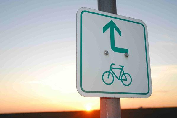 79- Radweg, Radwanderweg, Route, Hinweisschild, Richtung Rad, Fahrrad