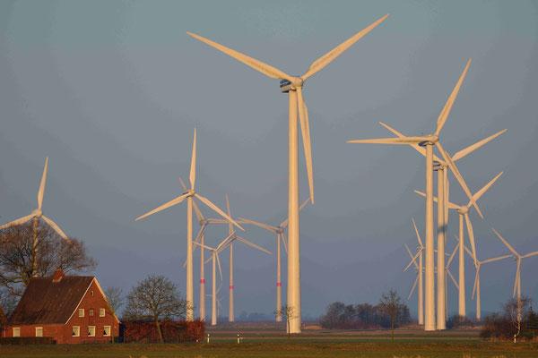 126 - Häuser im Norden Deutschland ganz in der Nähe zu einem Windpark -  oft Ursache für Widerstand gegen Windräder in der Bevölkerung.