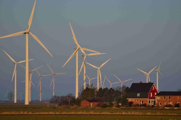 125 - Eine Siedlung in der Nähe eines Windparks - Bürgerproteste wegen Lärmbelästigung.