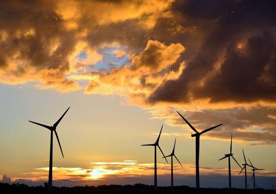 146 - Windräder vor stimmungsvollem Abendhimmel und gelb gefärbten Wolken.