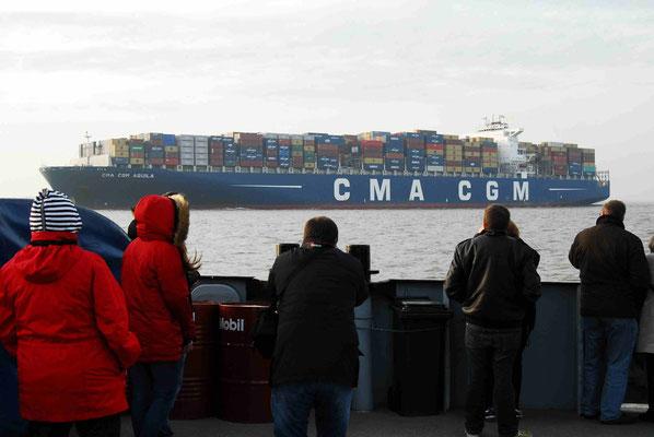 39 - Zuschauer an der Elbe beim Aufgrundlaufen der CHina Shipping Line 2015