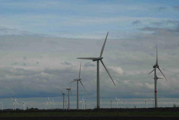 108- Windpark Lichtenau Asseln
