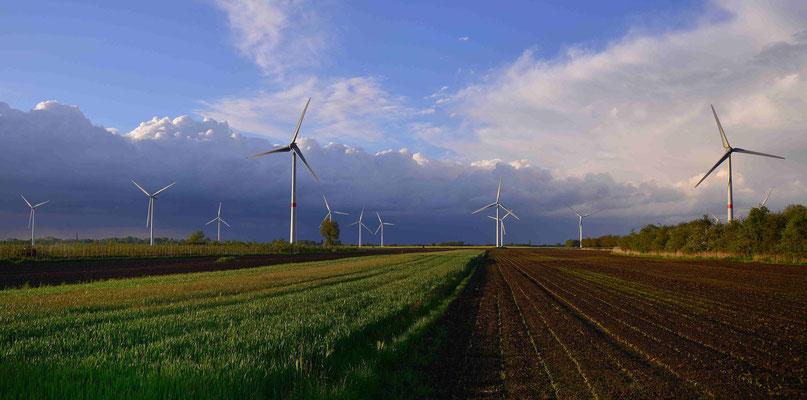 92 - Windpark Oederquart, Windrad, Windräder, Windkraftanlagen, Niedersachsen, Germany, Deutschland