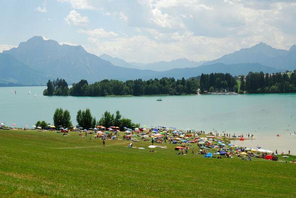 3- Forggensee, Allgäu, Füssen, Alpen, Bayern, Alpenpanorama