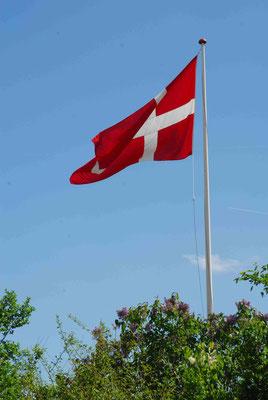 51- Dänemarkfahne, Dänemark, Fahne, Flagge, Landesfahne, dänisch