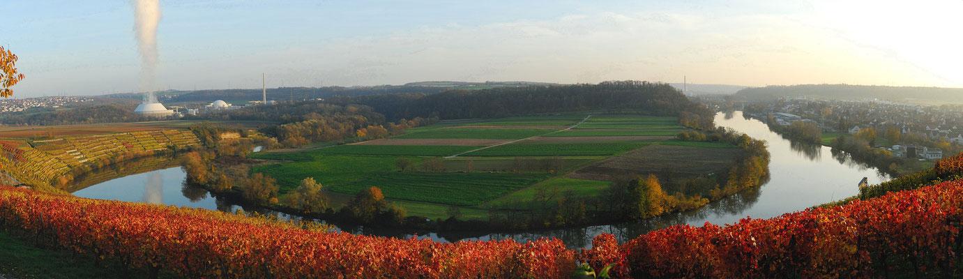 4- Weinberge, Neckarschleife, Herbst, Herbstfärbung, Besigheim, Mundelsheim, AKW, Panorama, Neckarwestheim