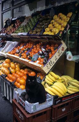 27 - schwarze Katze auf Obstkiste vor einem Gemüseladen.