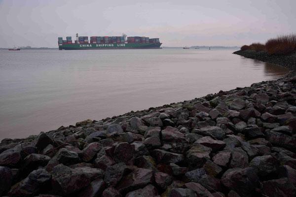 Containerschiff Elbe