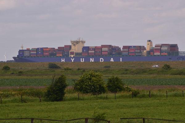 18 - Hyundai mit Elbmarsch im Vordergrund in Niedersachsen, Deutschland.