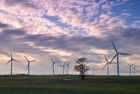 45 - Windpark Oederquart, Windrad, Windräder, Windkraftanlagen, Niedersachsen, Germany, Deutschland