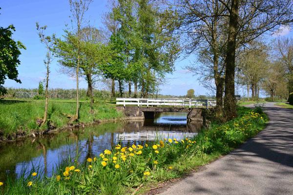 57- Strasse am Fleth, Niedersachsen, Norddeutschland