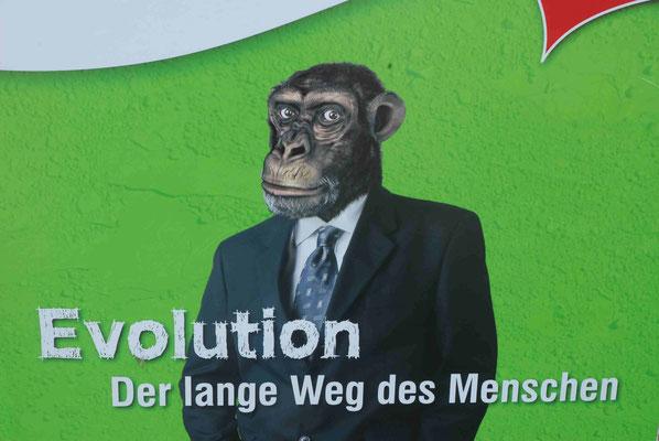 45- Evolution, Kampagne Natureum, der lange Weg des Menschen
