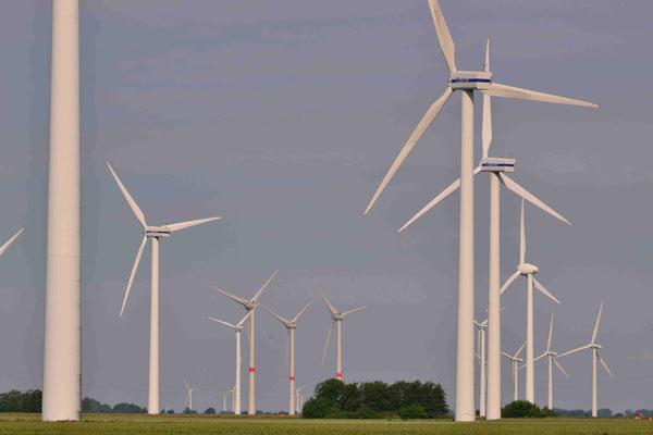 87 - Windpark Oederquart, Windrad, Windräder, Windkraftanlagen, Niedersachsen, Germany, Deutschland