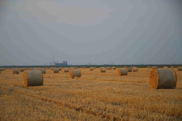 17- Strohballen, Ernte, Getreidefeld, Getreide