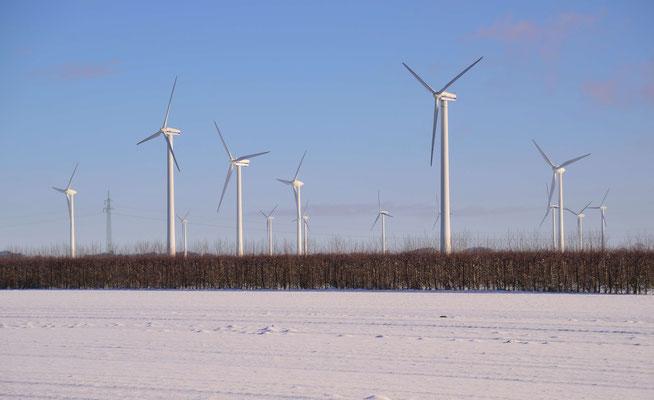 57 - Windrad, Windkraftanlage, Windkraft, Windgenerator, Ökostrom,  Windpark Oederquart, Winter, Schnee, verschneit