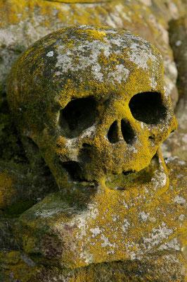 40- Totenkopf, Freidhof, verwittert, Moos, Patina