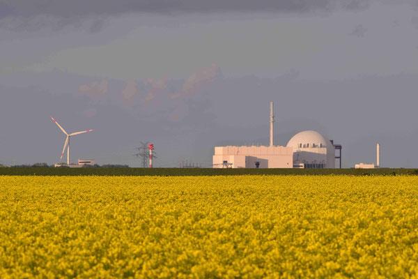 82 -  Windrad, Windkraftanlage, Windkraft, Windgenerator, Ökostrom,  Windpark Oederquart, AKW, Atomkraftwerk, Kernkraftwerk, Rapsfeld