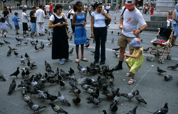 26- Mailand, Touristen füttern Tauben